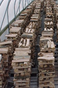 fire wood stacked in green house to dry out